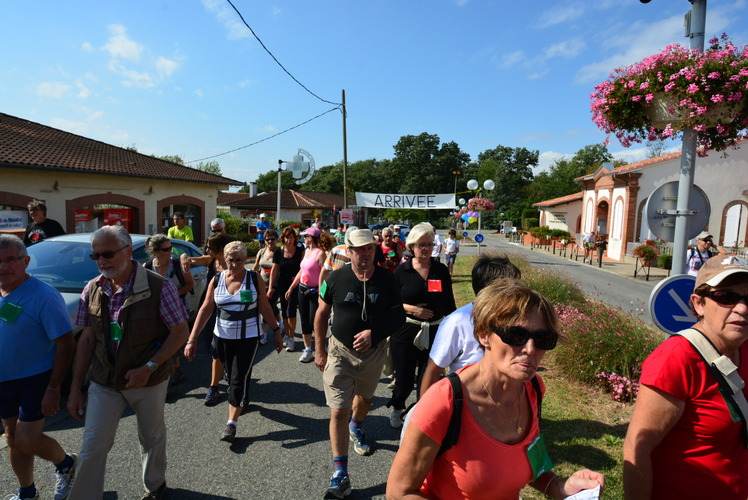 You are browsing images from the article: Photos - Marche ou Cours 2013